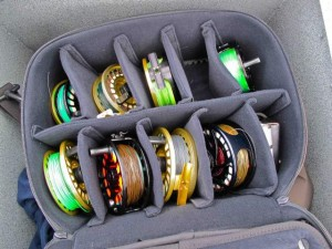Lots of fly fishing line